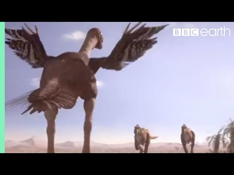 Oviraptorid Fights to Protect Nest | Planet Dinosaur | BBC Earth