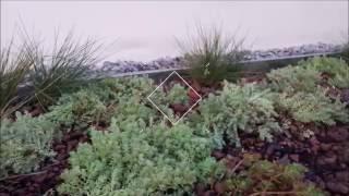 видео Сад на крыше: способы озеленения крыш домов с фото