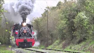 Tren de la Araucania y El Valdiviano...Guerra de Silbatos