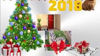видео Новый год 2018 во Владимире