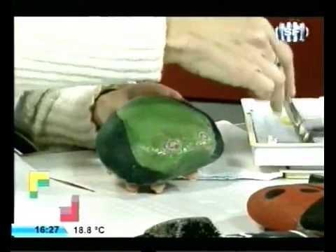 Andrea pallero hoy c mo pintar piedras sapo youtube for Pintura para pintar piedras