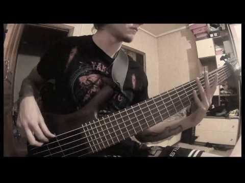 Soundgarden - Bones of Birds (Bass cover)