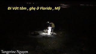 Đi vớt tôm , cua ghẹ ở cầu Skyway Florida Mỹ - Catch shrimp blue crab at Skyway bridge Florida US