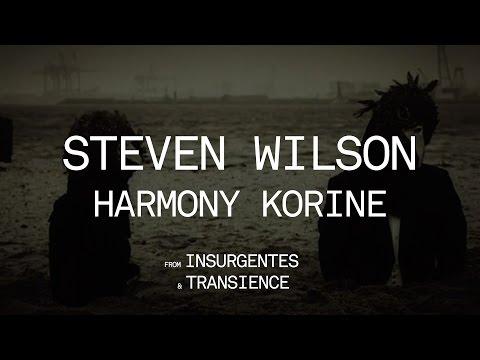 Steven Wilson  Harmony Korine from Insurgentes