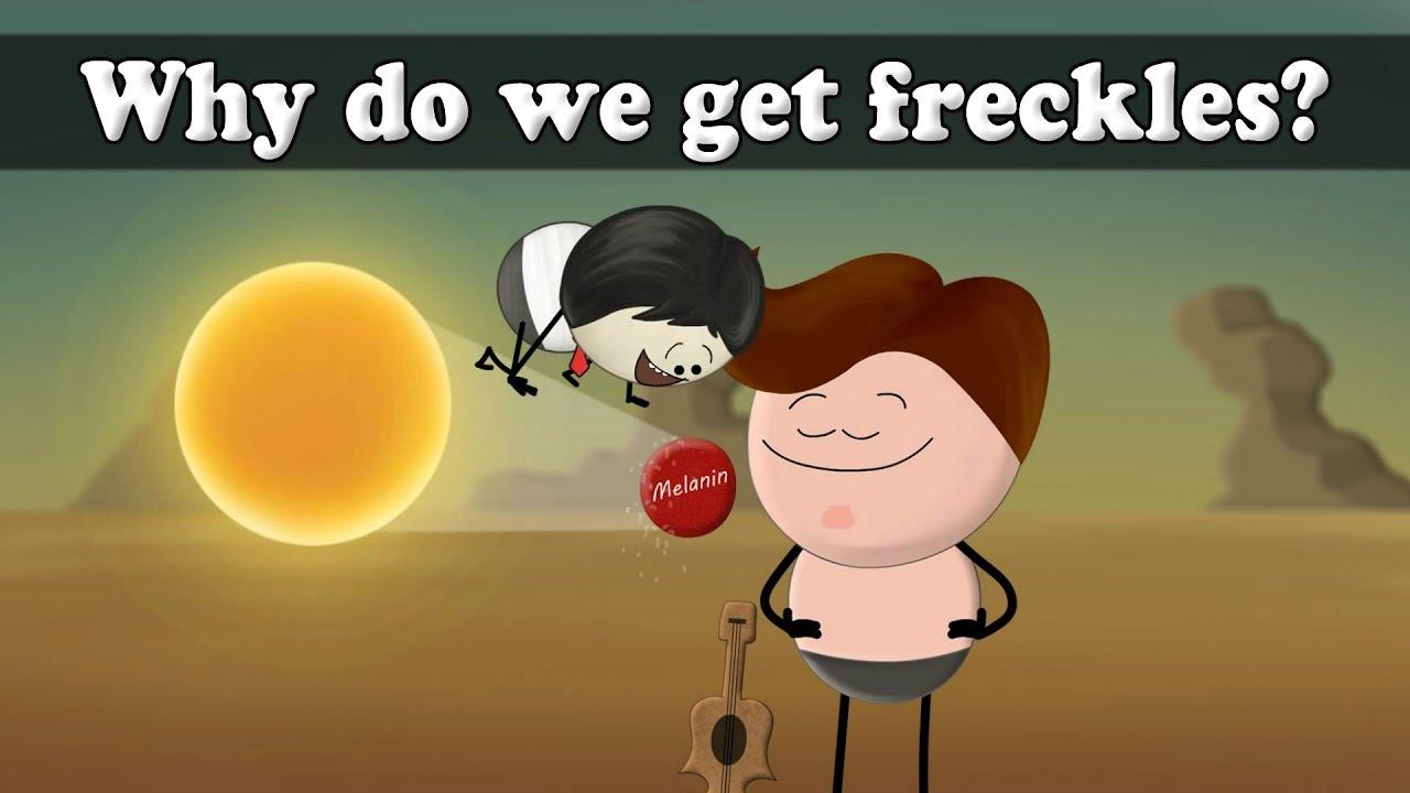 Why do we get freckles? | #aumsum #kids #science # ...