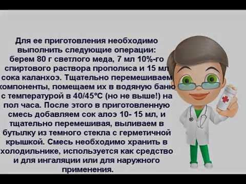 Настойка прополиса - применение, лечение прополисом