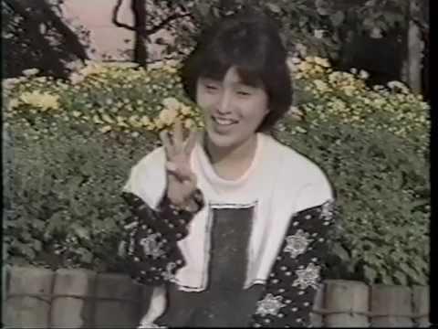 酒井法子 お願いダーリン モモコクラブ 19861116
