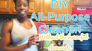 DIY All-Purpose Cleaner! - NO Harmful Chemicals