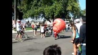 2012 Salsa Dash 5k: Mascot Race (strawberry Takes Out Camera Man)