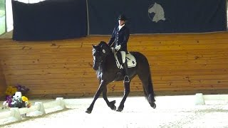 Monoceros ISF - 2012 Friesian Gelding - SOLD by Uwe 458, out of Cle...