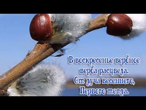 ВЕРБОЧКА.Детская песенка! - Простые вкусные домашние видео рецепты блюд