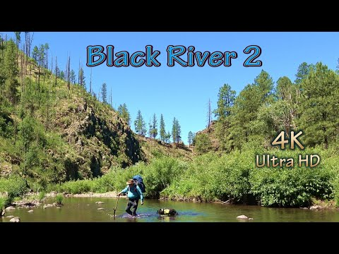 Trail Hike Arizona Backpacking Fishing Trout & Bass In Black River With My Wilderness Camping Dog/4K