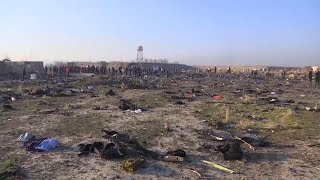 What Reporter Saw When She Went to Plane Crash Site in Iran