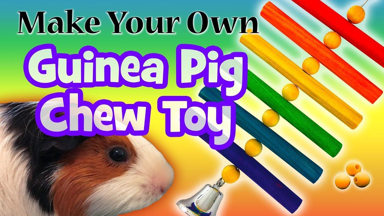 homemade guinea pig toys