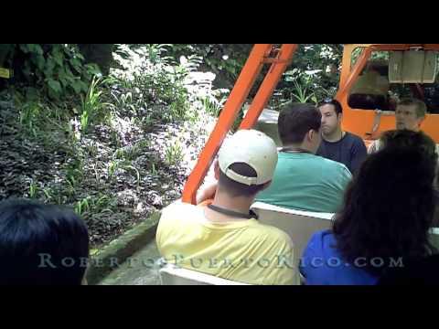 Japan & Puerto Rico Sugoi! Sugoi! Camuy Caverns! 日本&プエルトリコ すごい!すごい! Camuy洞窟!
