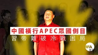 【桑海神州】2018年11月21日 中國橫行APEC眾國側目,習帝難破冷戰困局