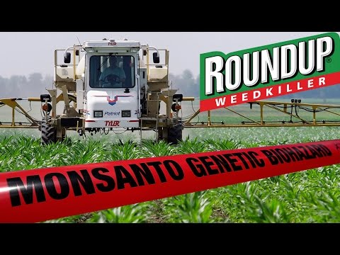 Monsanto's Roundup Labeled Cancer-Causing in California The California Environment