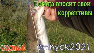 Рыбалка на реке Припять Сомик в копилке Отпуск 2021 ЧАСТЬ 6
