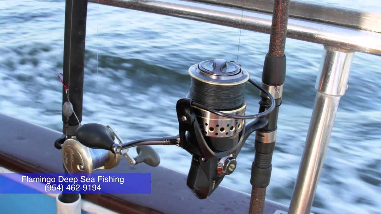 Fort lauderdale deep sea fishing flamingo drift fishing for Deep sea fishing ft lauderdale