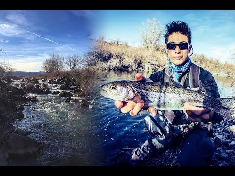 Winter Trout Fishing On The South Platte River In Downtown Denver COLORADO