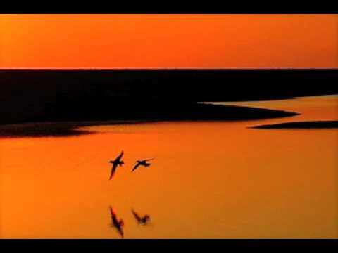 dave-grusin-on-golden-pond-liljekonvallen