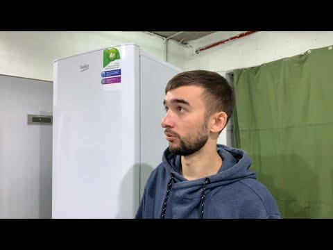 Дешёвый холодильник Beko (беко или бяка?). Стоит ли покупать?