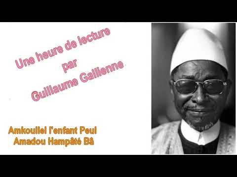 """""""Amkoullel, l'enfant Peul"""", Amadou Hampâté Bâ  Ca peut pas faire de mal  Guillaume Ga"""