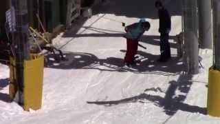 Funny Video(От Жирафа) 3
