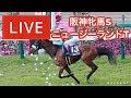 【レース中継】『 NZT ,  阪神牝馬S 』 ~  4月予想バトル!