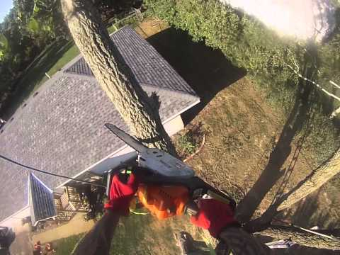 how to cut down a tree hanging over house