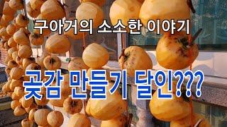 구아거의 소소한 이야기 - 곶감 만들기