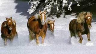 Vysotsky «Кони привередливые» (Capricious  horses)