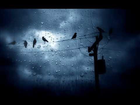James Gelfand - Sometimes The Good Kill Movie (Theme)