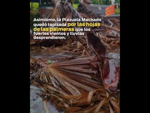 Casa y automóviles dañados por las fuertes lluvias en Mazatlán
