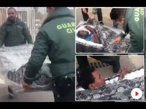 Image result for African Men Found Hiding In Mattresses Just To Enter Europe (photos)