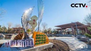 [中国新闻] 带你逛世园 趣玩路线第三条:园艺小清新 玩转世园会 | CCTV中文国际