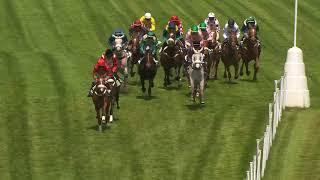 Vidéo de la course PMU PRIX DU NIVERNAIS
