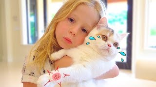 Download Stacy and the best cat stories for kids