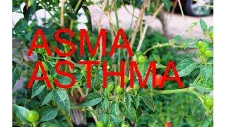 Asma Astma