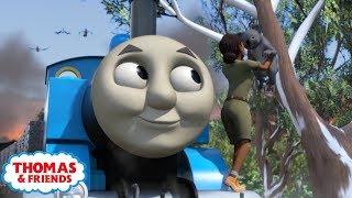 Thomas Andamp Friends  Banjo And The Bushfire  Kids Cartoon