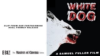 WHITE DOG (Masters of Cinema Clip from the Samuel Fuller directed film)