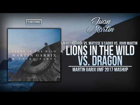 Lions In The Wild vs. Dragon (Martin Garrix UMF 2017 Mashup)