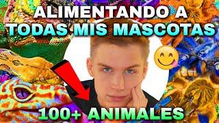 ALIMENTANDO A TODAS MIS MASCOTAS (+100 ANIMALES) *INCREÍBLE*   Tag De Las Mascotas 🐾   Tomas Pasie