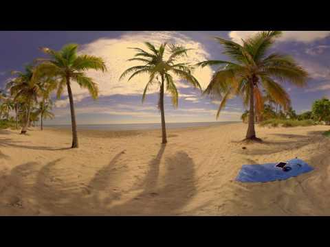 The RBC AVION® Virtual Reality Experience I White Sand Beach I 360 Video