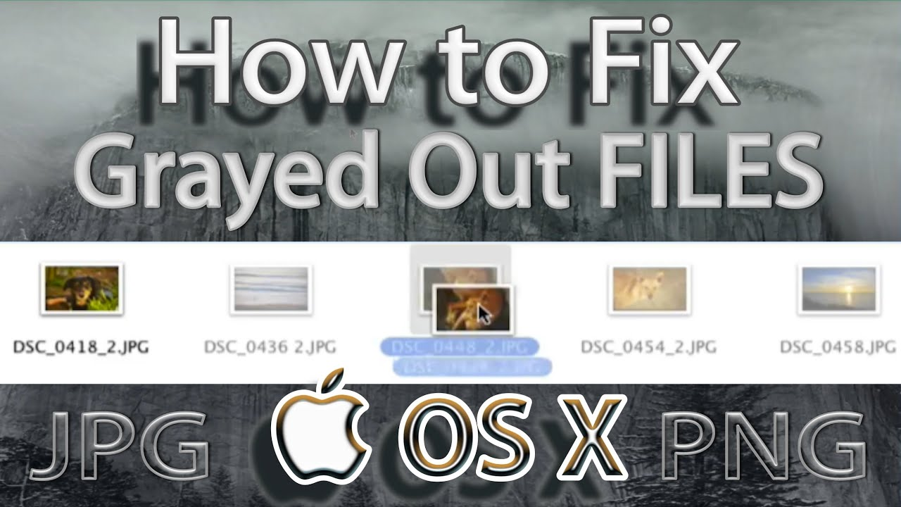 How to Fix Greyed Out Files on MacOS