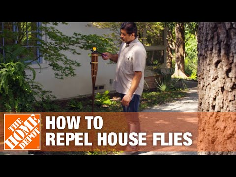 How to Get Rid of Flies - The Home Depot