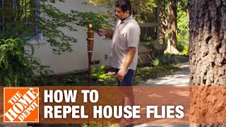 how to get rid of flies the home depot