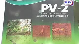 Video PV-2: suplemento nutricional cubano para estimular y revitalizar download MP3, 3GP, MP4, WEBM, AVI, FLV Desember 2017
