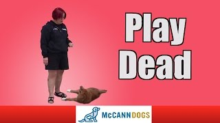 "Teach Your Dog How To ""play Dead"" On Command"