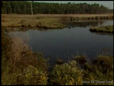 Blackwater Refuge Episode 02